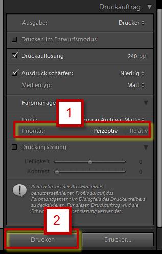 Renderpriorität wählen und Drucken im Adobe Photoshop Lightroom 5