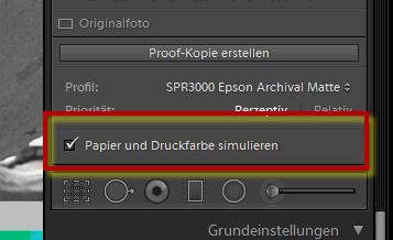 Papier und Druckfarbe simulieren