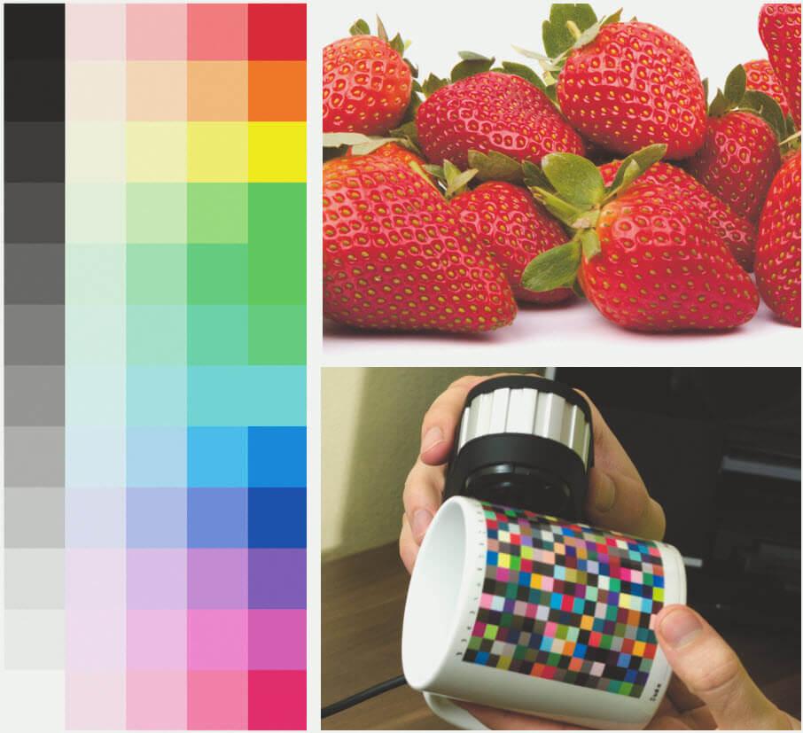 mit Softproof, Renderpriorität Perzeptiv und simulierter Papier und Druckfarbe