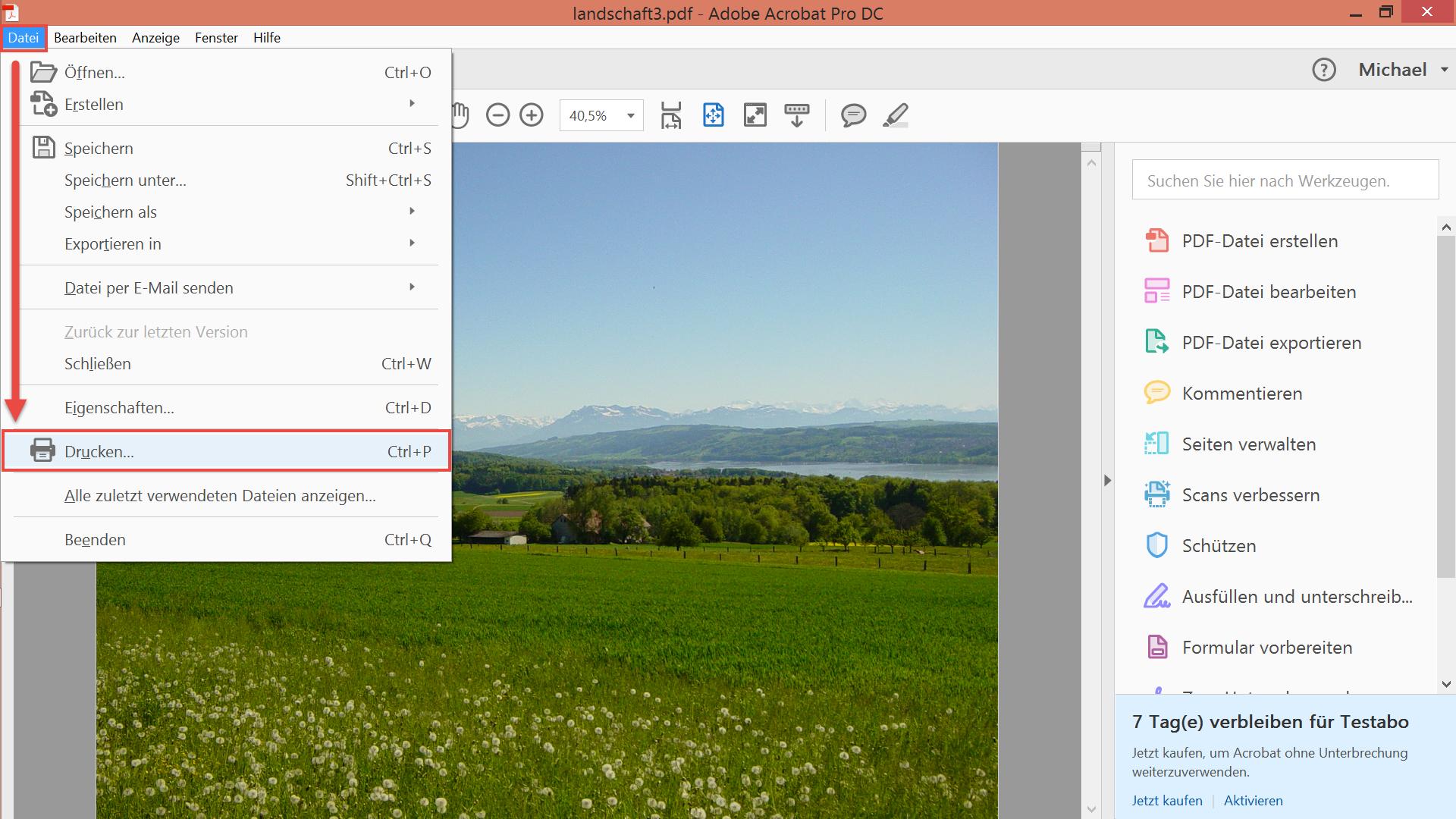 Adobe Acrobat - Datei drucken