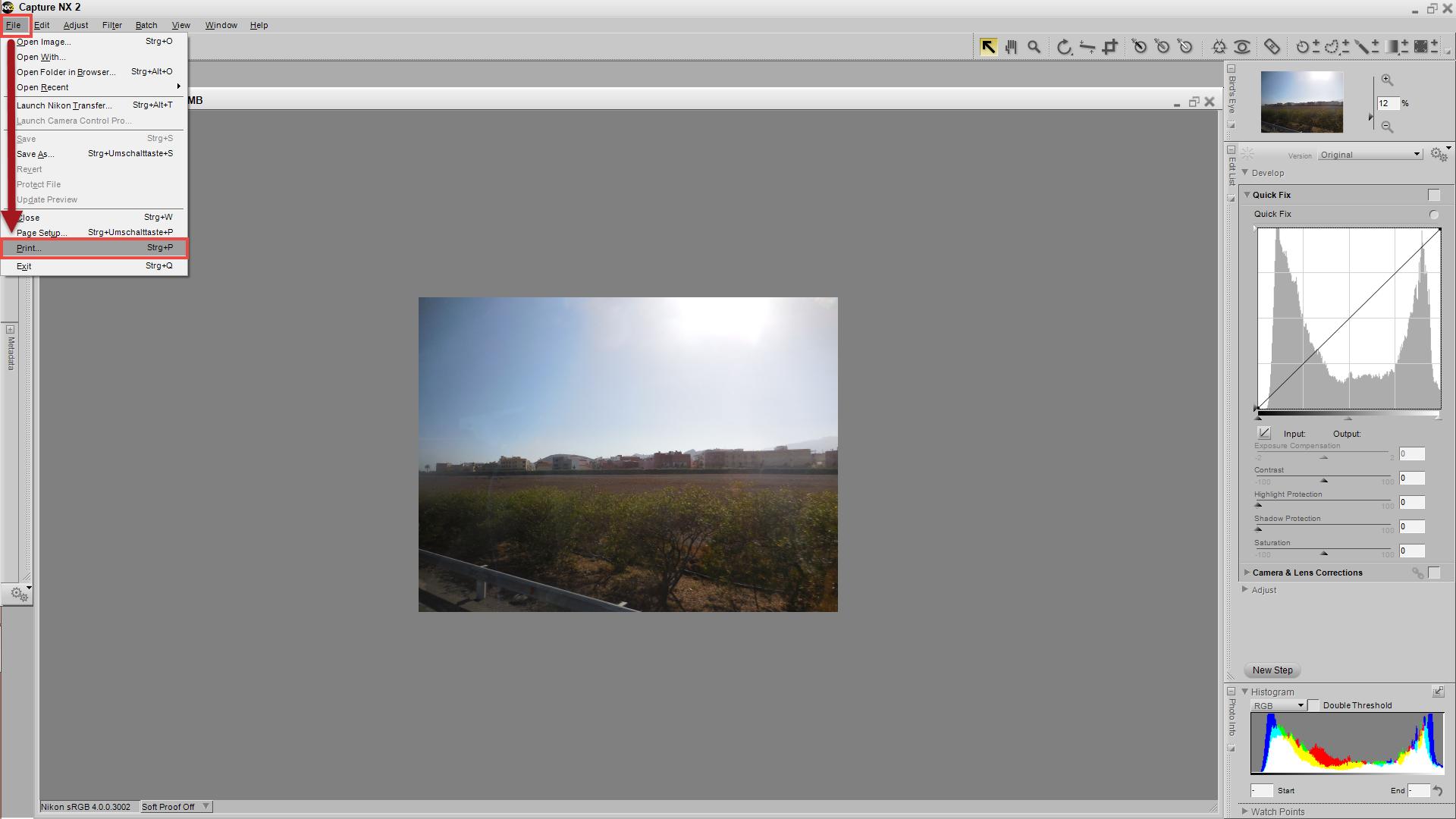 Capture NX 2 - File/Print