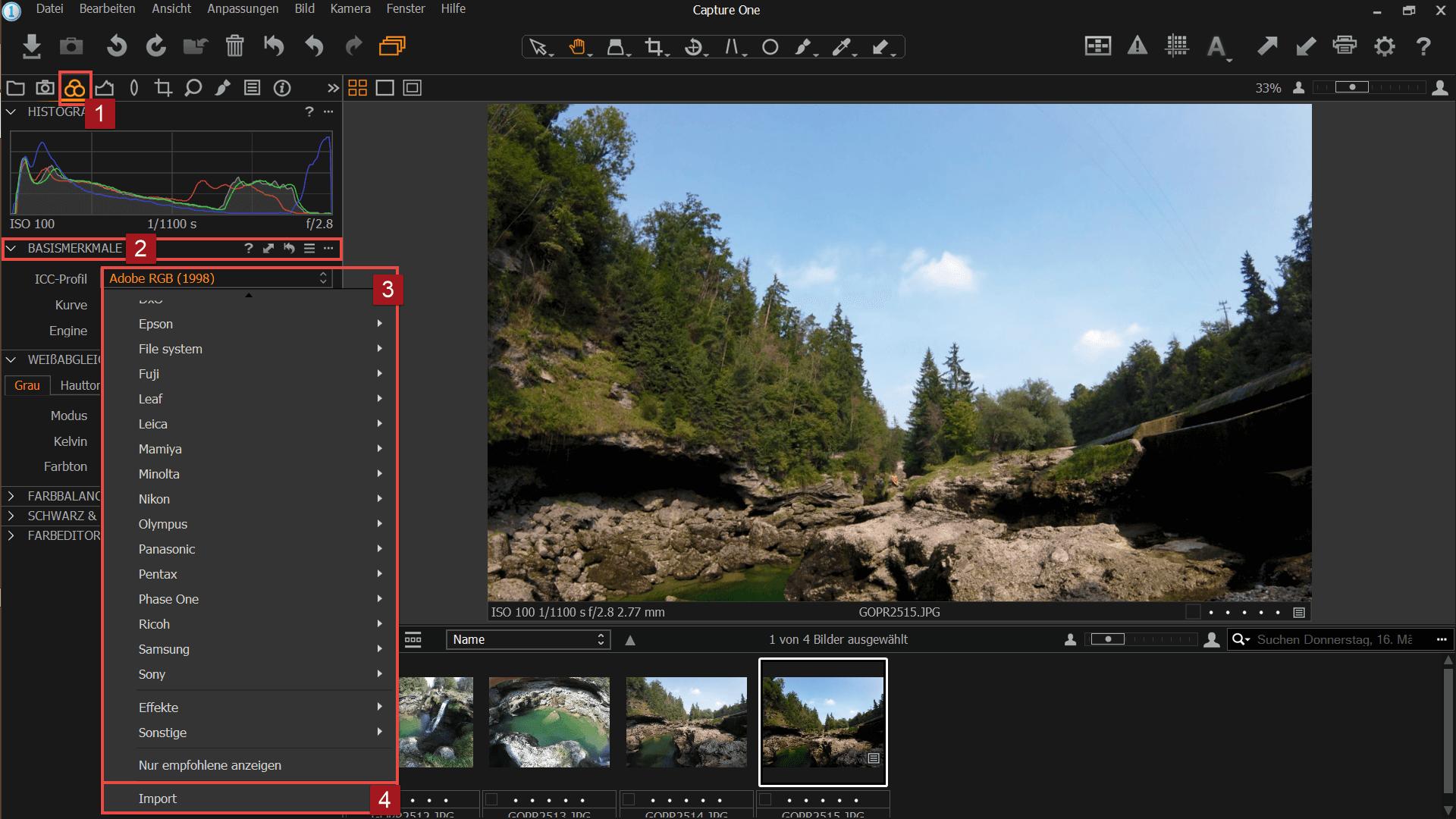 Nikon Capture One Pro - Hauptfenster Farben