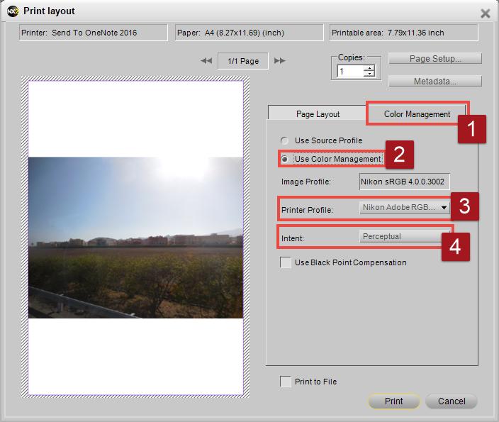 Capture NX 2 - Print Layout
